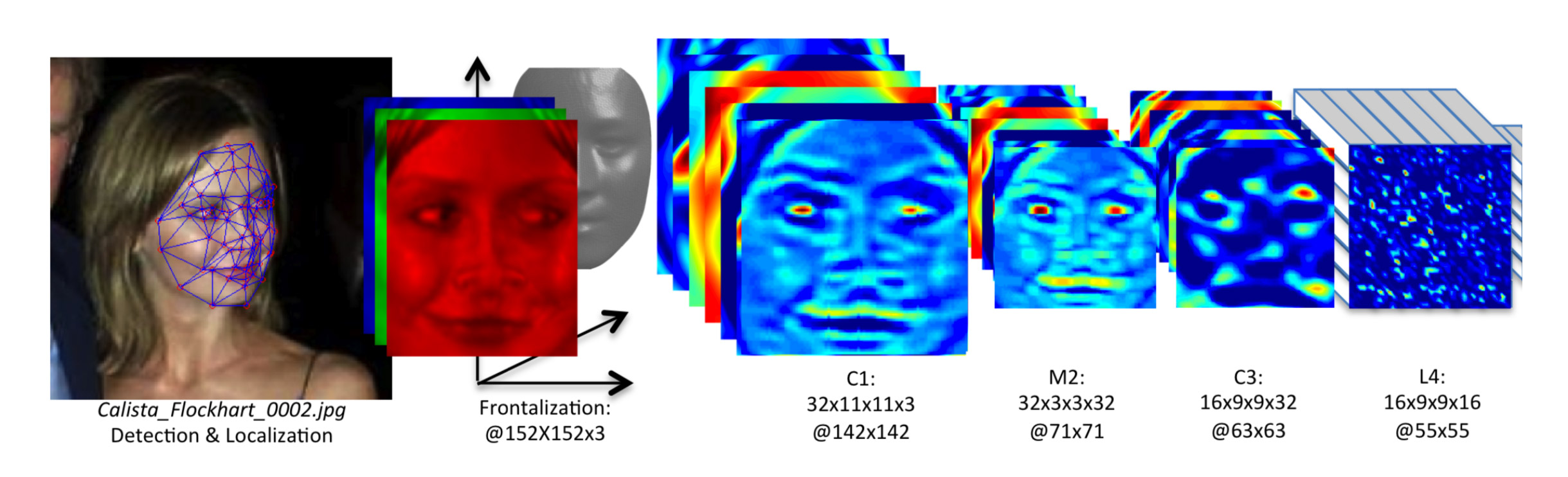 A scientific diagram shows the process by which a photograph of Calista Flockhart is transformed into data